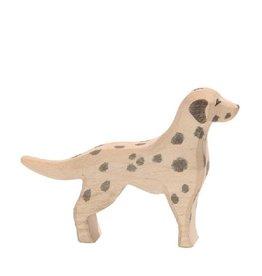 Ostheimer Dog - Dalmatian