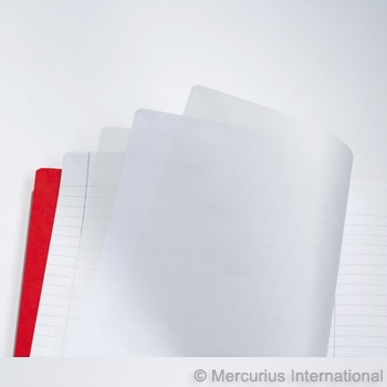 "Mercurius Main lesson book lined/blank/onion - red- med 8.25"" x 9.25"" (21x25cm)"