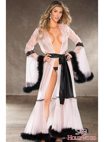 STUNNING SHEER LONG ROBE