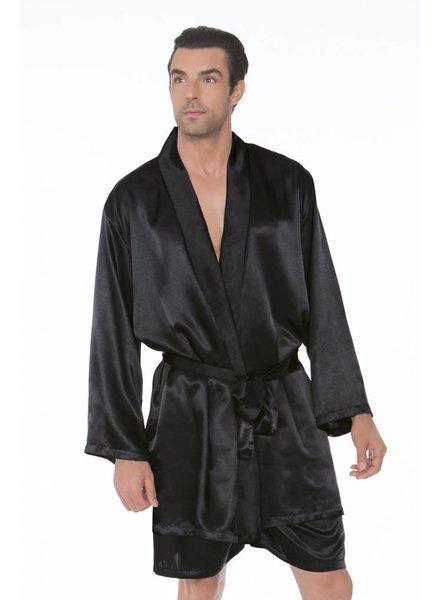 466081f5e1526 Satin Robe with Matching Sash