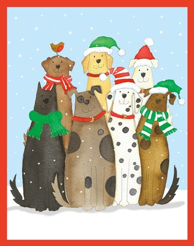 Boxed Christmas Cards.Caspari Boxed Christmas Cards Set Of 16 Dogs In Snow