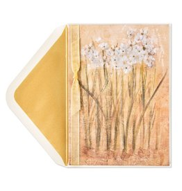 PAPYRUS® Sympathy Cards Watercolor Paperwhites