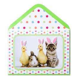 Papyrus Greetings Easter Card Easter Wannabe Bunnies
