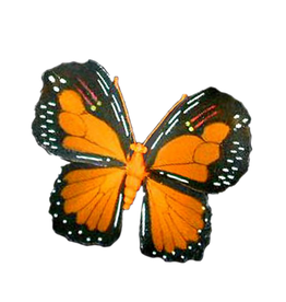 Premier Butterfly Decoration 9 Inch Orange Nylon w Wire Frame