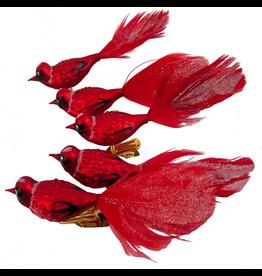 Kurt Adler Red Cardinal Birds w Feather Glass Clip Ornaments Set of 5