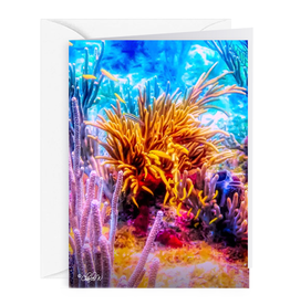 By The Seas-N Greetings Blank Note Card - Cash - Gift Card Holder - Reef I