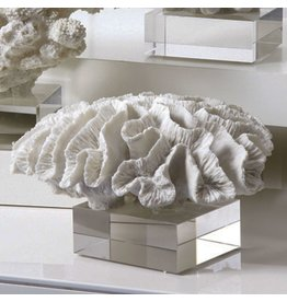 Twos Company White Coral Sculpture on Glass Stand 6201-20-B Twos Company