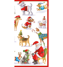 Caspari Christmas Money Cards Pack of 4 Waiting for Santa