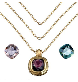 Annaleece Necklace Transformations Gold w Interchangeable Crystals