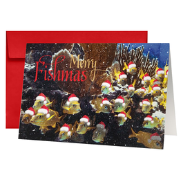 By The Seas-N Greetings Christmas Card Merry Fishmas - From All of Us