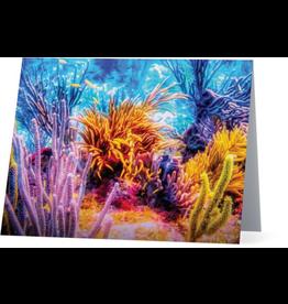 By The Seas-N Greetings Blank Note Card Coral Reef Fiesta