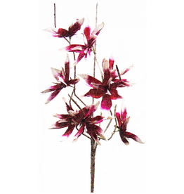 Kalalou Botanica Stem 109 42 Inch W Pink And White Flowers