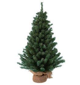 Kurt Adler Christmas Tree 12 Inch Mini Pine Tree on Round Wooden Base