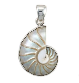 Charles Albert Jewelry Fine Sterling Silver Pendant w Nautilus Shell