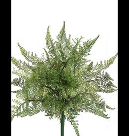Winward Flowers Floral Green Lace Fern Bush 10 inch Pick