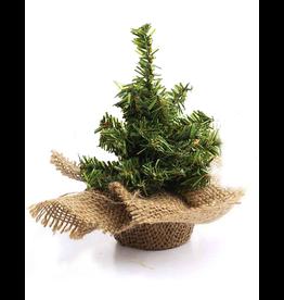 Darice Mini Christmas Tree w Burlap Base 6 inch 32 Tips