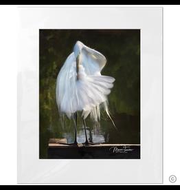 Maureen Terrien Photography Art Print Egret Preening C 11x14 - 16x20 Matted