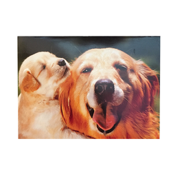 Avanti Fathers Day Card Dog and Puppy Lucky Pup