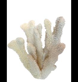 A.A.F. Decorative Finger Coral Cluster 6x8 inch Home Accents Decor