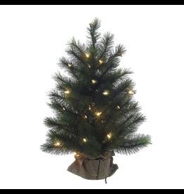 Kurt Adler Christmas Tree Pre-Lit 2 FT Highland Tree w Clear WW Lights