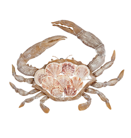 Gallerie II Crab Scallop Shells and Tin  Wall Art 12x10