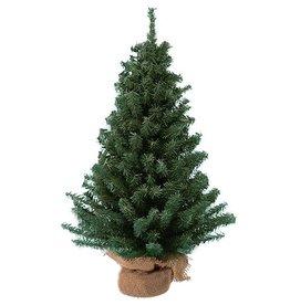 Kurt Adler Mini Pine Christmas Tree 18 Inch Burlap Wrapped Base