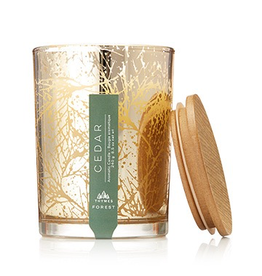 Thymes Forest Cedar Candle 8.5oz Poured Candle