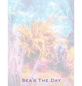 By The Seas-N Greetings Sea's The Day Notepad w Ocean Reef Design Memo Pad