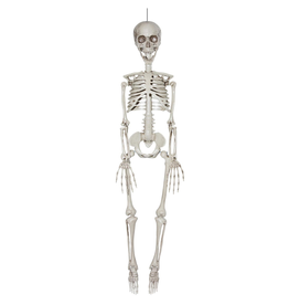 Darice Halloween Hanging Skeleton Bones Decoration 7x35 Inch