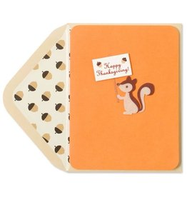 PAPYRUS® Thanksgiving Cards Felt Squirrel Holding Happy Thanksgiving Sign