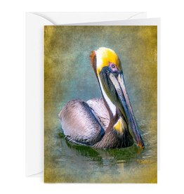 By The Seas-N Greetings Blank Note Card - Cash - Gift Card Holder - Pelican I
