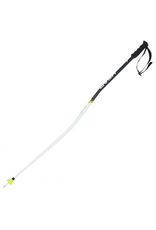 HEAD/TYROLIA HEAD SKI POLE WORLDCUP SG