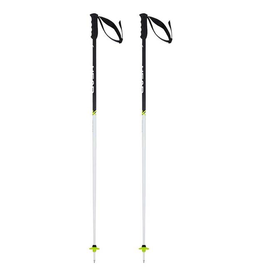 HEAD/TYROLIA HEAD SKI POLE WORLDCUP SL