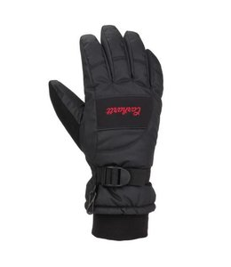 Carhartt Glove Insulated Waterproof WA684