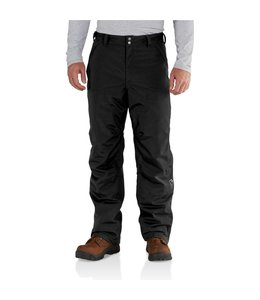 Carhartt Pant Shoreline Insulated 102717