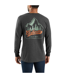Carhartt T-Shirt Pocket Long-Sleeve Mountain Patch Graphic Workwear 104029