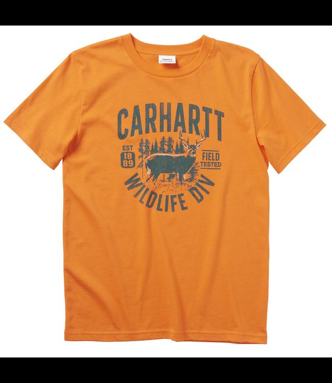Carhartt Short Sleeve Graphic Tee Boy's CA6080