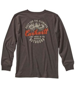Carhartt Boy's Long Sleeve Heather Graphic Tee CA6095