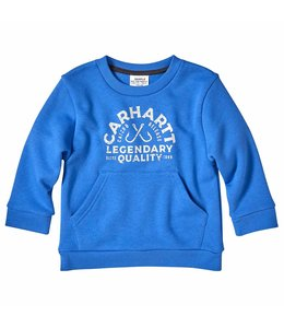 Carhartt Boy's Toddler Long Sleeve Crewneck Graphic Fleece CA6130