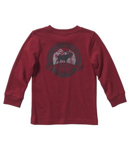 Carhartt Boy's Toddler Long Sleeve Graphic Tee CA6128