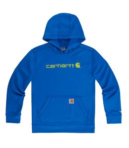 Carhartt Sweatshirt Force Logo CA8732