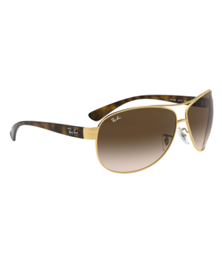 Ray Ban 3386 Aviator Sunglasses