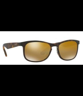 Ray Ban 4263 Polar Sunglasses
