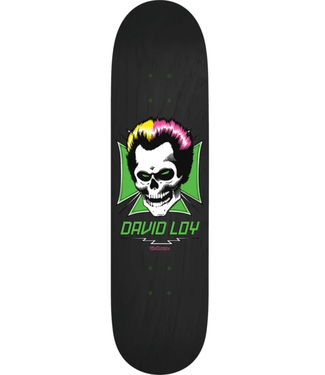 "Birdhouse Skateboards 8.38"" Loy Skull Deck"