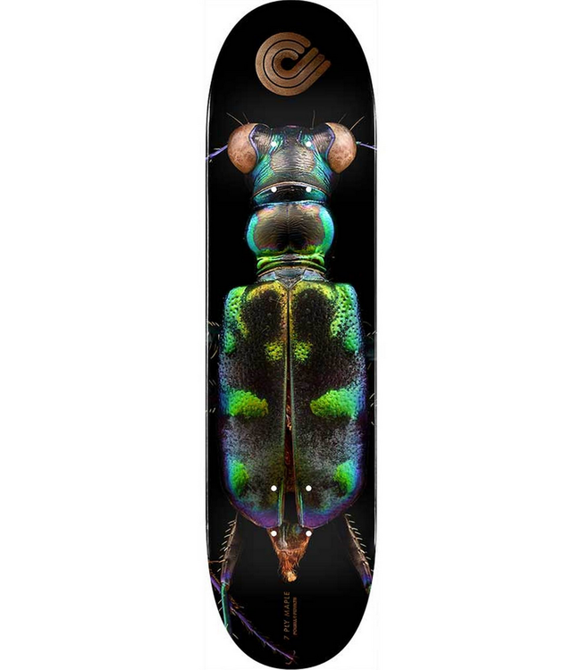 "POWELL PERALTA 8.25"" Biss Tiger Beetle Deck"