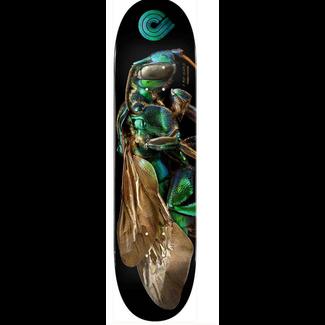 "POWELL PERALTA 8.0"" Biss Cuckoo Bee Skate Deck"
