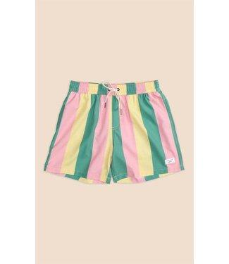 Duvin Design Co. Pastel Stripe Swim Short