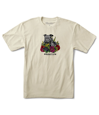 Primitive Skateboards Handsome T-Shirt