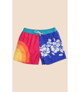 Duvin Design Co. Corner Oasis Boardshorts
