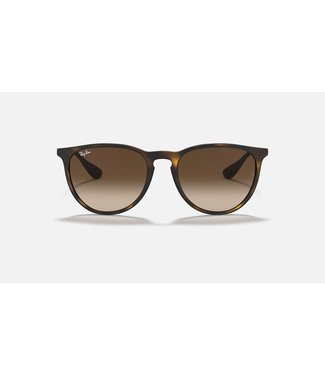 Ray Ban Erika Classic Polar Sunglasses